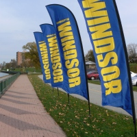 University of Windsor Campus Flags